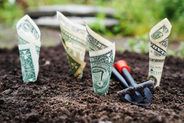 cum să faci bani pe internet fără umezeală)